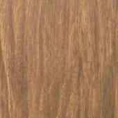 American Red Oak