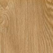 Belgium Oak