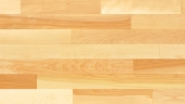 Yellow Birch Exclusive